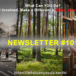 What Can You Do Newsletter 101