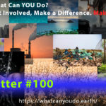 What Can YOU Do_Newsletter 100