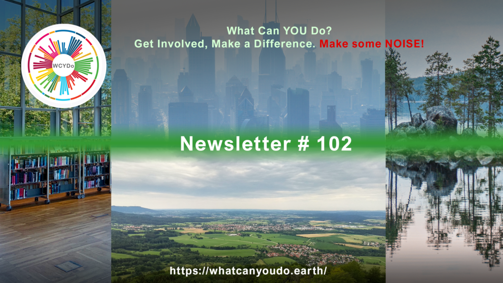What Can You Do Newsletter 102