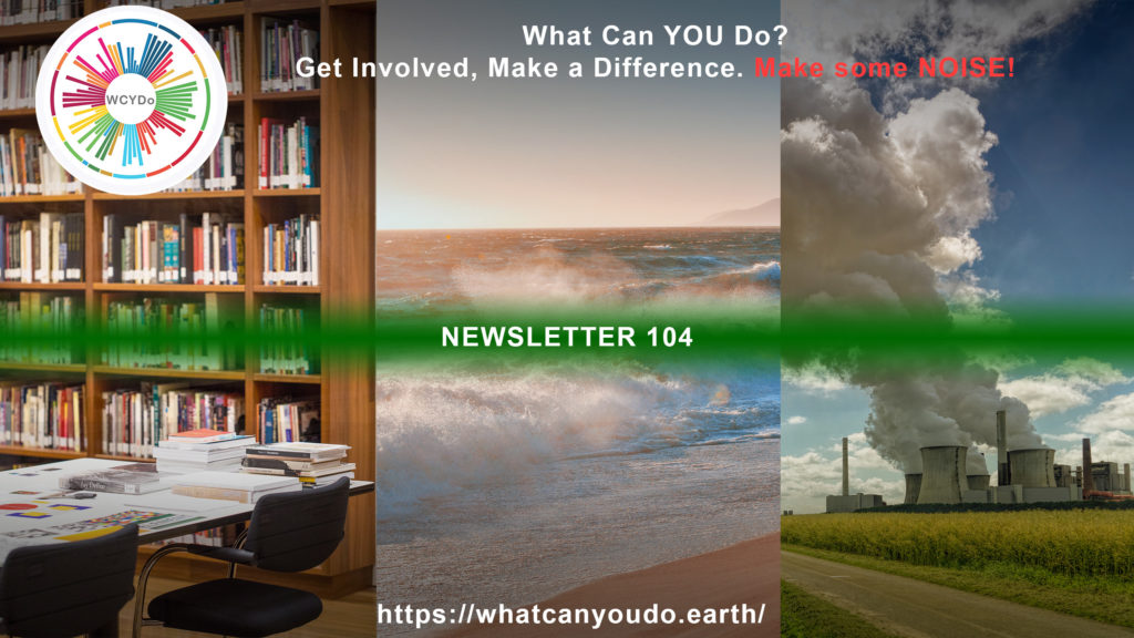 What Can You Do Newsletter 104