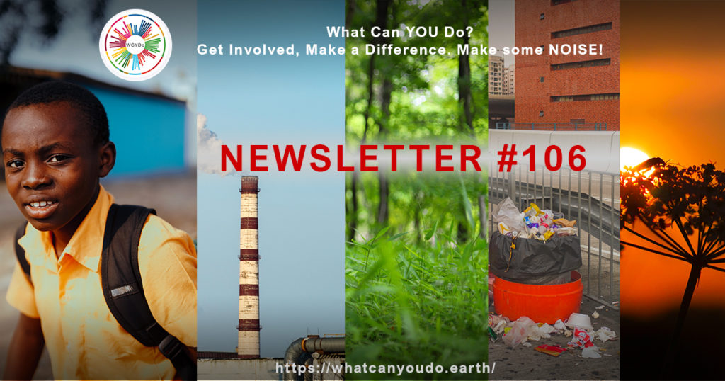 What Can You Do Newsletter 106