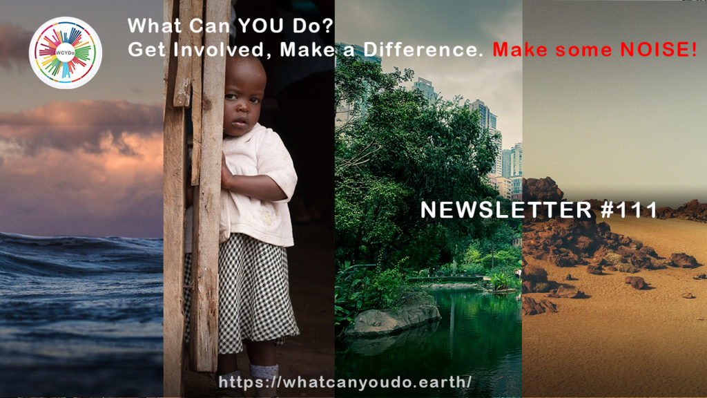 What Can You Do Newsletter 111