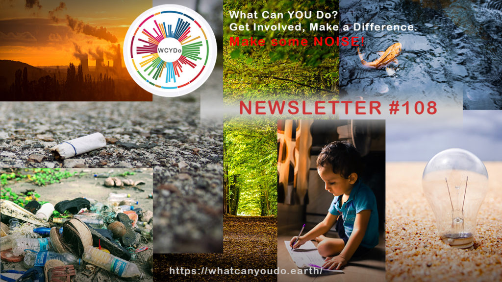 What Can You Do Newsletter #108