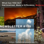 What Can You Do Newsletter #109