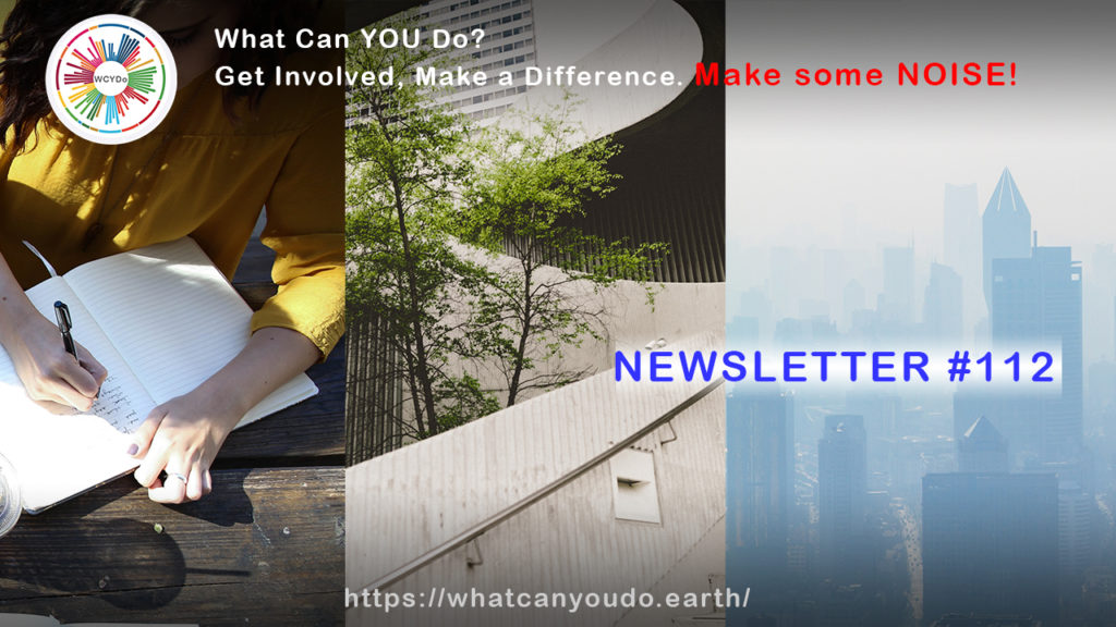 What Can You Do Newsletter #112
