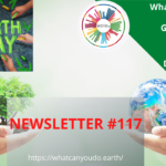 What Can You Do Newsletter 117