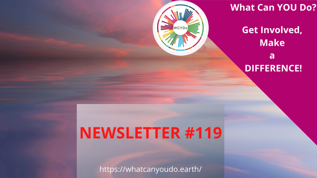 What Can You Do Newsletter #119