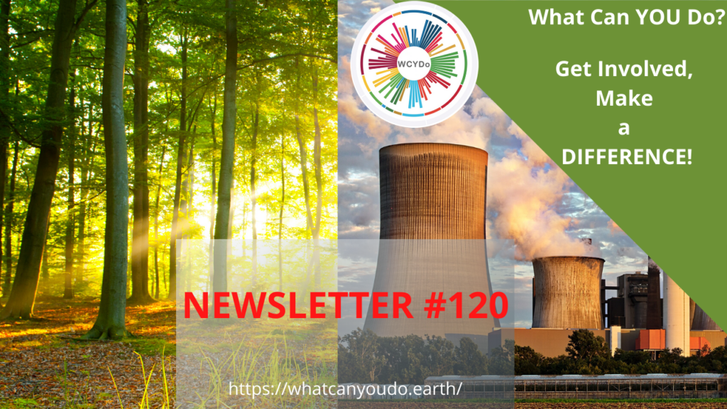What Can You Do Newsletter 120