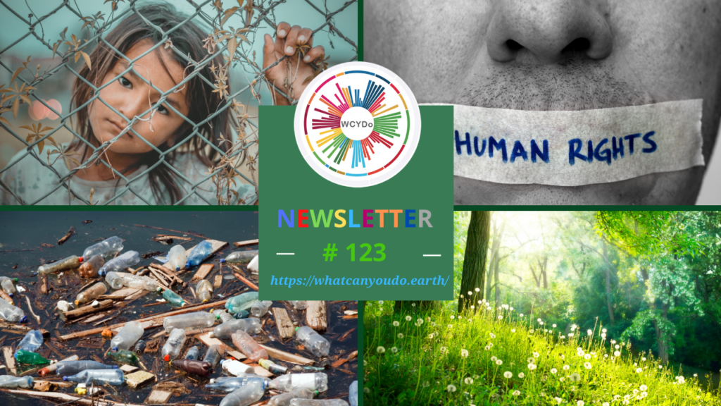 What Can You Do Newsletter 123