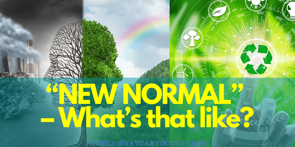 """NEW NORMAL"" - What's that like?"