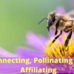 Connecting, Pollinating and Affiliating