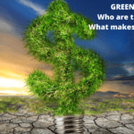 GREEN BONDS Who are they for and What makes them Green?
