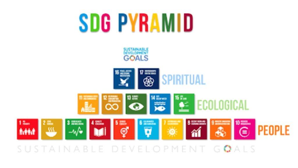 Education & Sustainability