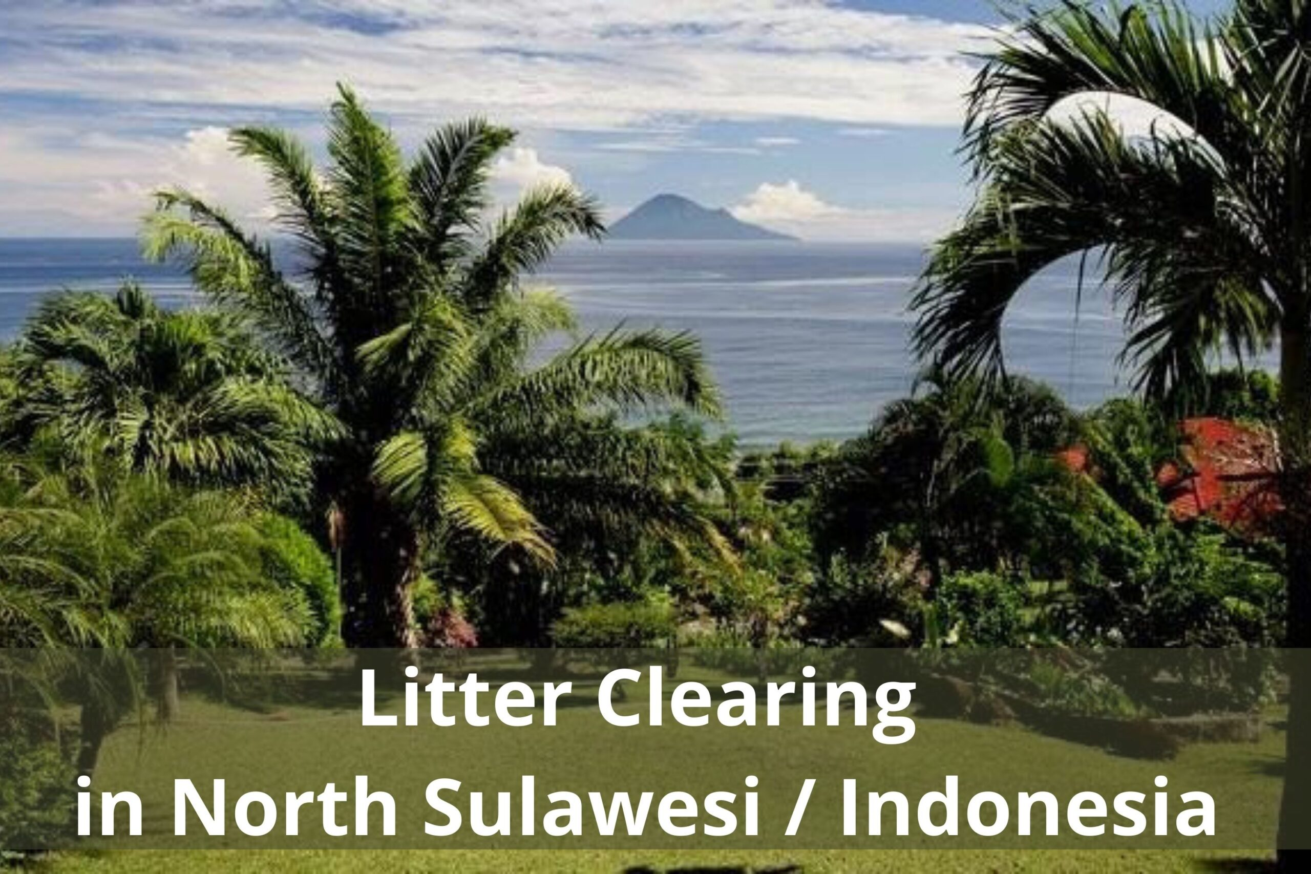 Litter Clearing in North Sulawesi